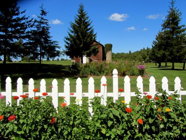 Decorative Fencing Ideas for the Garden