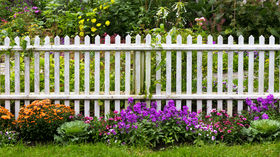 What Type of Fencing Should You Choose